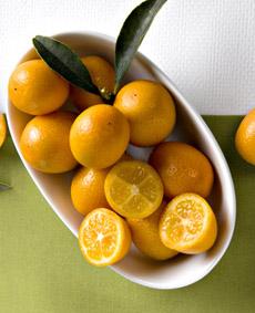 kumquat-whiteflowerfarm-230