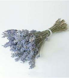lavender_bouquet_230