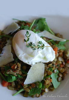 lentils-poached-egg-theculinarychronicles-230