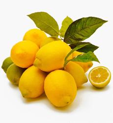 lisbon-lemon-230