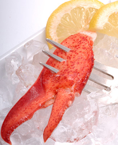 lobster-claw-cooked-hancocklobster-230