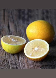 meyer-lemon-beauty-goodeggs-230