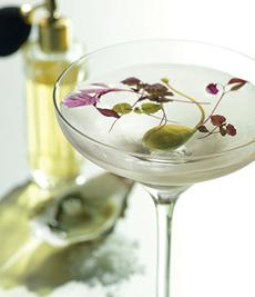 microgreen-martini-greygoose-230