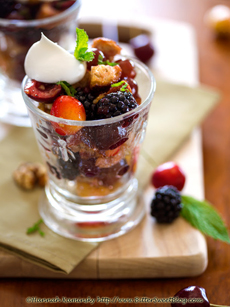 mixed-fruit-panzanella-salad-kaminsky-230