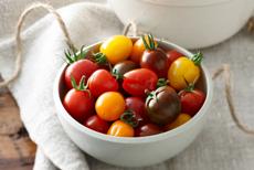 Cherry & Grape Tomatoes