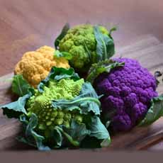 Multicolored Cauliflower