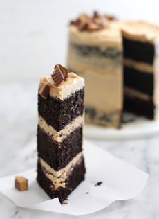 /home/content/p3pnexwpnas01 data02/07/2891007/html/wp content/uploads/naked chocolate peanut butter slice thebakerchick 230