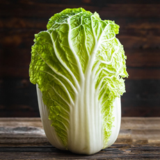 Head Of Napa Cabbage