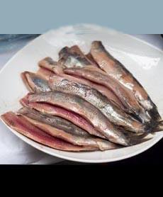 nieuwe-maatjes-herring-brined-takeaway-wiki-230