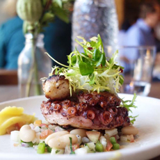 Octopus Salad With Beans