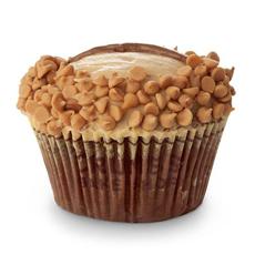 peanut-butter-mini-chips-crumbs-230sq
