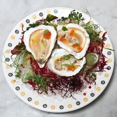 pearls-in-oysters-chalkpointkitchen-230sq