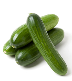 /home/content/p3pnexwpnas01_data02/07/2891007/html/wp content/uploads/persian cucumbers johnvenaproduce 230