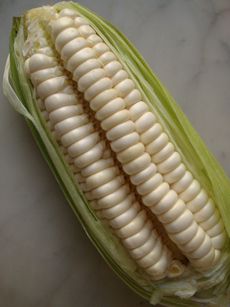 peruvian-corn-choclo-peruviandelights-230r