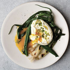 poached-egg-grilled-scallions-pistachios-theguildednutFB-230sq