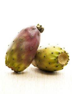 prickly-pear-230