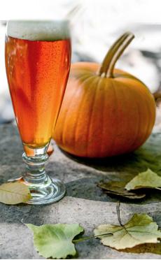 pumpkin-beer-w-pumpkin-craftbeer.com-230