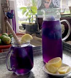 Purple Iced Tea