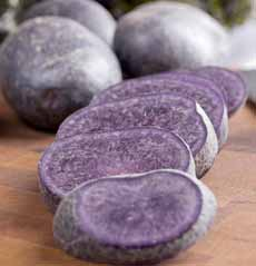 Purple Peruvian Potatoes