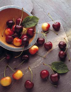 queen-anne-bing-cherries-230r
