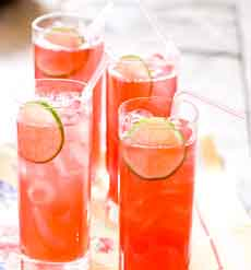 Lime Rickey Recipe