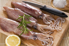 raw-squid-w-tentacles-ultimate-guide-to-greek-food.com-230