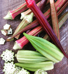 /home/content/p3pnexwpnas01_data02/07/2891007/html/wp content/uploads/red and green okra starlingyardsFB 230