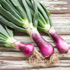 Spring Red Onions