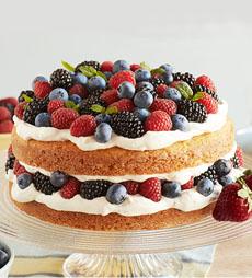 red-white-blue-berry-shortcake-driscolls-230