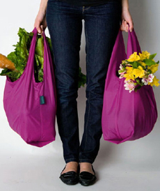 reusable-shopping-bag-stylehive-230