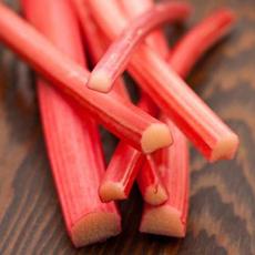 rhubarb-SLT-beauty-230