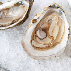 Riptide Oysters