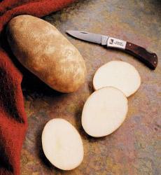 Idaho Russet Potatoes