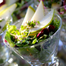 /home/content/71/6181571/html/wp content/uploads/salad martini glass elegantaffairsFB 230sq