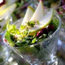 /home/content/p3pnexwpnas01_data02/07/2891007/html/wp content/uploads/salad martini glass elegantaffairsFB 230sq