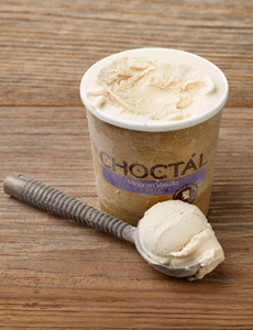 Choctal Single Origin Vanilla Ice Cream