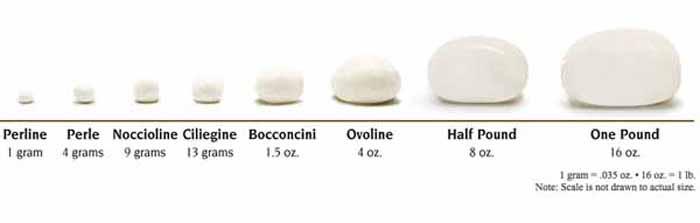 Mozzarella Sizes
