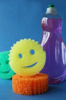 sponges-detergent-230