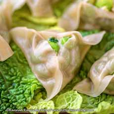 Green Pea Potstickers