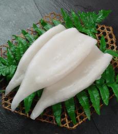Raw Squid