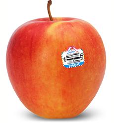 Pinata Apple