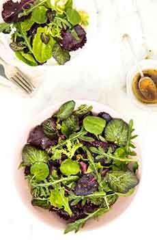 Summer Salad With Nasturtium Leaves
