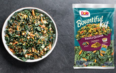 Dole Bountiful Triple Quinoa Salad Kit