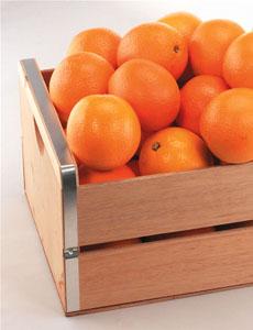 valencia_orange-crate-floridajuice.com-230