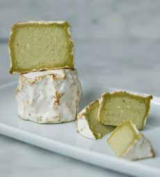 Vermatcha Cheese