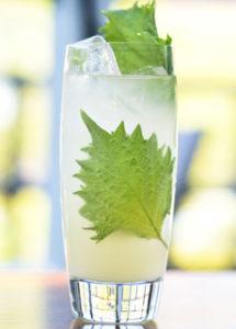 Summer Mocktail